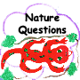 Nature Questions